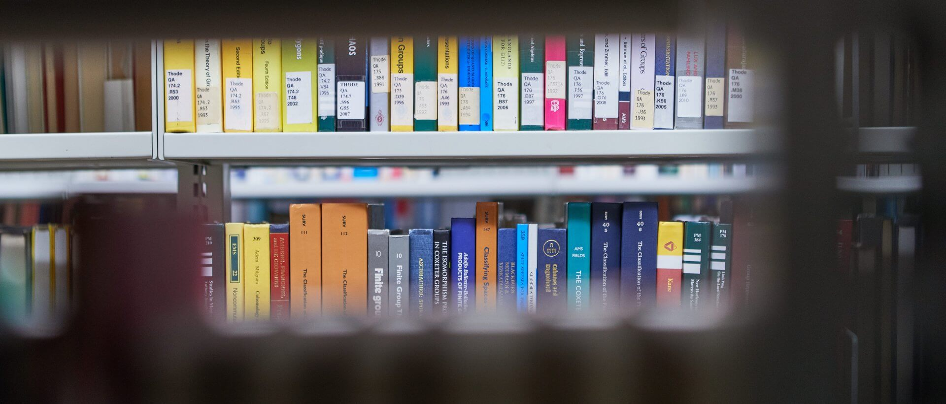 Between the bookshelves of Thode Library
