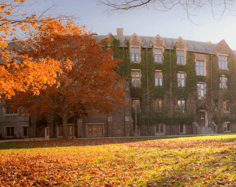Campus during the fall